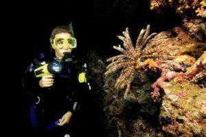 specialty nacht duiken
